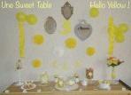 Comment faire une sweet table facile et pas chère avec Allo Maman Dodo