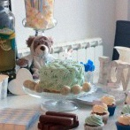 Une Baby shower surprise en bleu, taupe et blanc