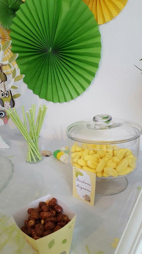 baby shower hibou chouette baby shower jaune vert