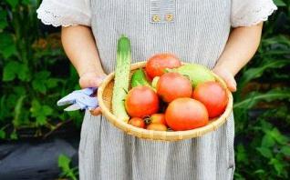 Aménager un jardin pour enfant selon la pédagogie Montessori