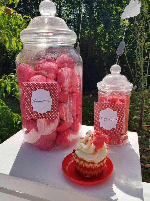 baby shower rouge