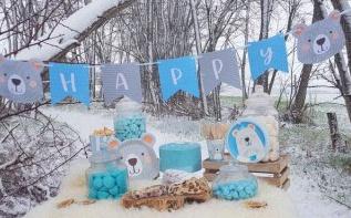 Un anniversaire Ours Polaire : la magie de la neige