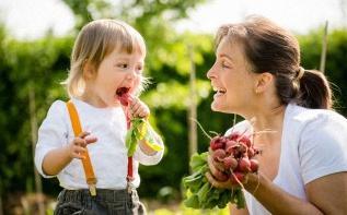 Cultiver un potager en ville avec un enfant avec Mon petit jardinier